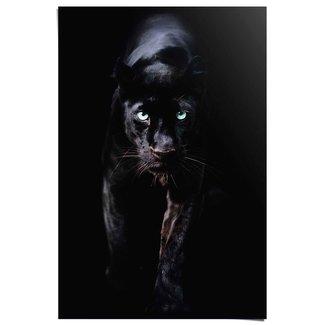 Poster Schwarzer Panther
