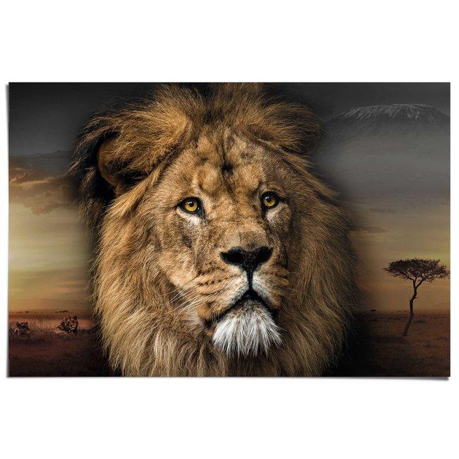 Poster Löwenkopf