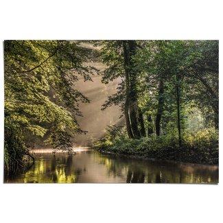 Poster Lichtspiel am Waldsee