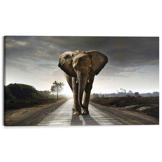 Wandbild Elefantenkönig