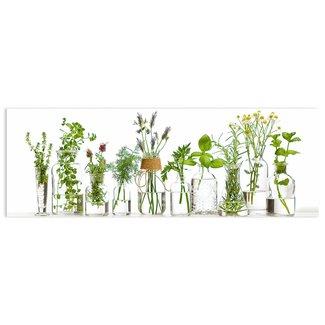 Glasbild Kräuter in Vasen