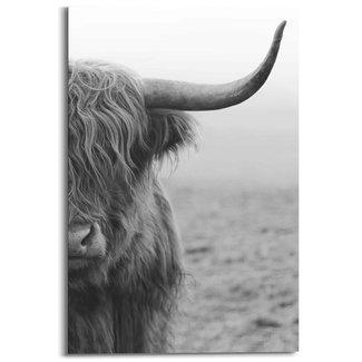 Wandbild Highlander Bulle