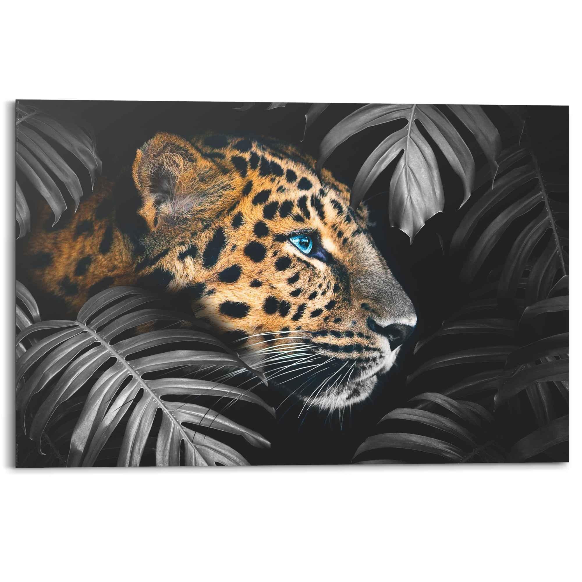 Leopard Jungle   Pflanze   Tiermotiv   Wandbild Mehrfarbig