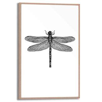 Gerahmtes Bild Libelle
