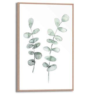 Gerahmtes Bild Eukalyptus