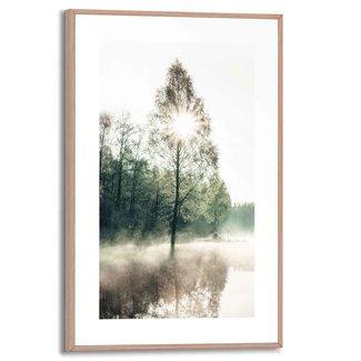 Gerahmtes Bild Sonne durch die Bäume