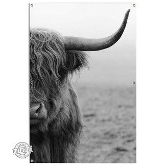 Gartenposter Highlander Bulle