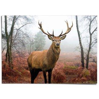 XXL Poster Hirsch im Wald