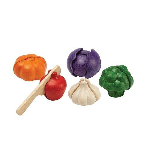 Plan Toys Groente set 5 kleuren 6-delig
