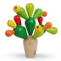 Balanceer Cactus
