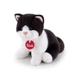 Trudi Kitten Brad