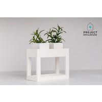 Moderne plantentafel Wit