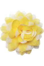 Gestreepte bloem geel-wit