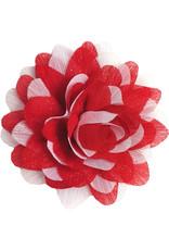 Gestreepte bloem rood-wit