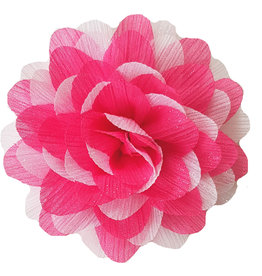 Gestreepte bloem roze-wit