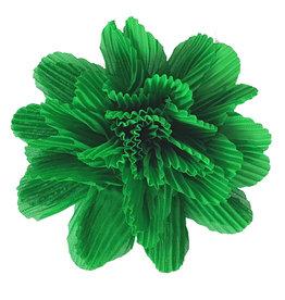 Wafelbloem groen