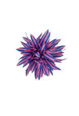 Haarclip roze blauw