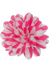 Gestreepte bloem, roze-wit