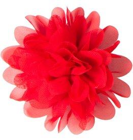 Voile bloem, rood