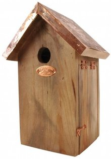 Brown wooden bird houses specifically for the blue tit