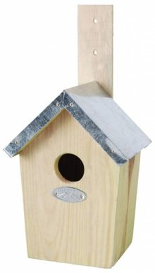 Special Bird Houses for the Great Tit