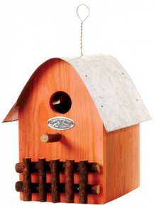 Design birdhouses in orange