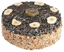 Yummy! A real bird cake for outdoor birds