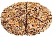 Bird Pizza made of different types of bird seed