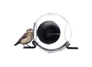 Buying Bird Feeder? Bird Feeder! With us you can buy a birdfeeder outside for birds. Buy Birds in NeaBirdfeeder? With us you can buy a birdfeeder outside for birds. The birdfeeder may be mounted on each window with the suction cup. The handy zu