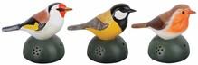Set van 3 decoratieve welkomstvogels met tjilp geluid (1x koolmees, 1x roodborst en 1x vink)