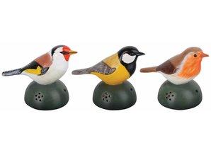 Set van 3 decoratieve welkomstvogels met tjilp geluid!