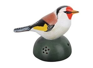 Decorative finch with chirp sound and motion!