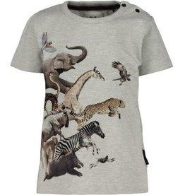 Koko Noko Baby t-shirt 37A-30834
