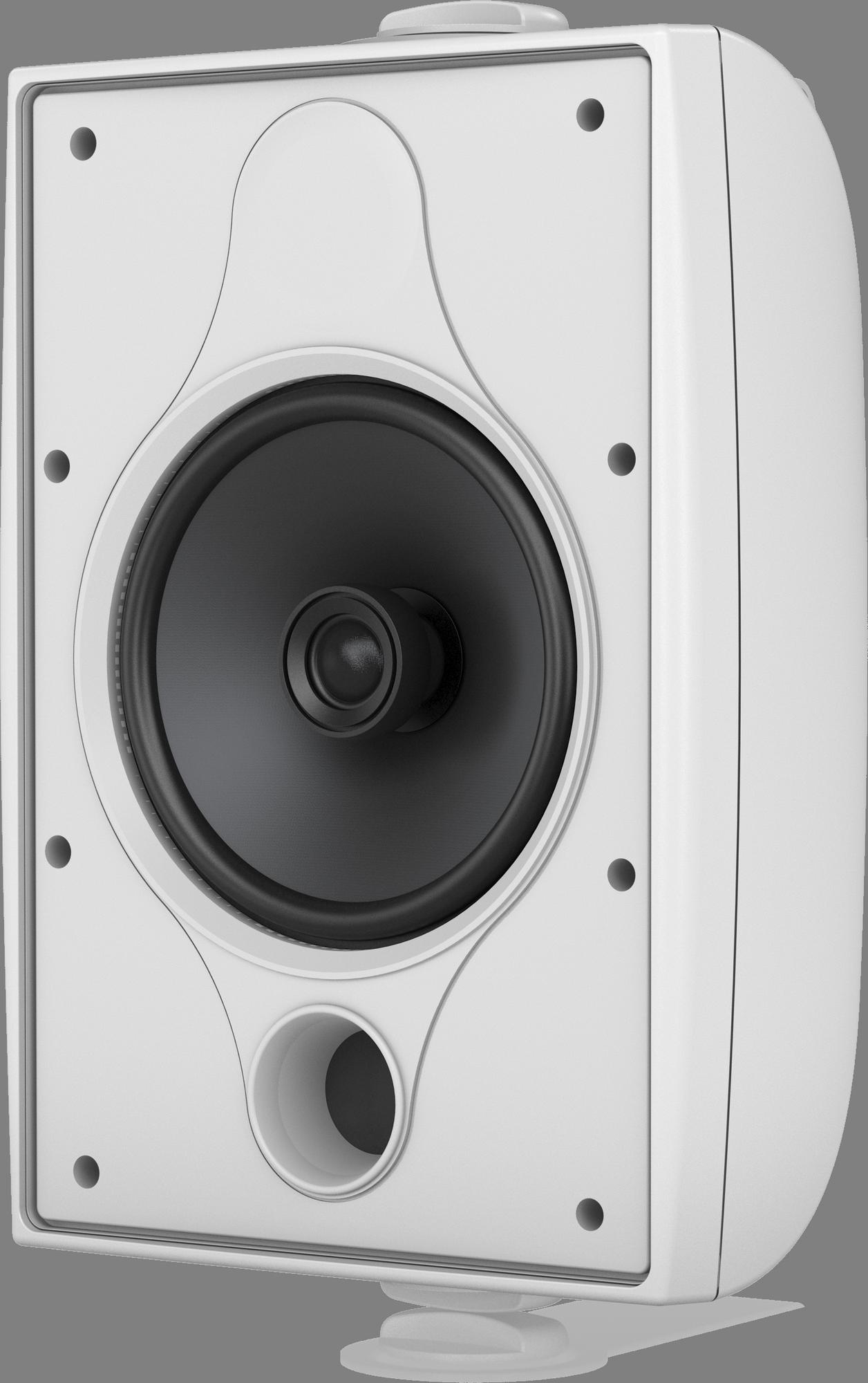 Tannoy  DVS 6-WH - Install Speaker