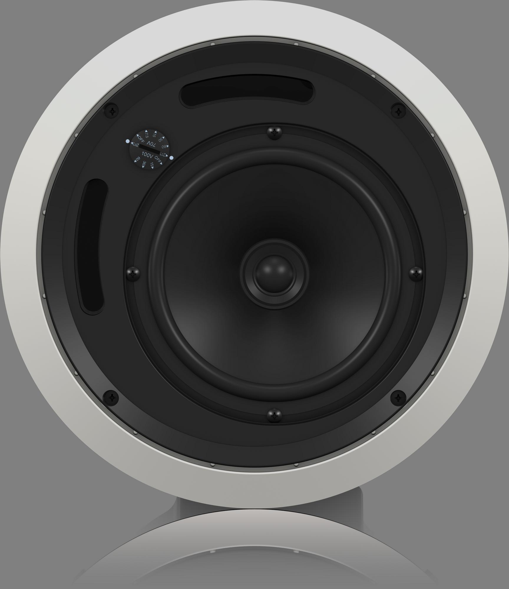 Tannoy  Tannoy - B-stock - CVS 6 - plafond luidsprekerset