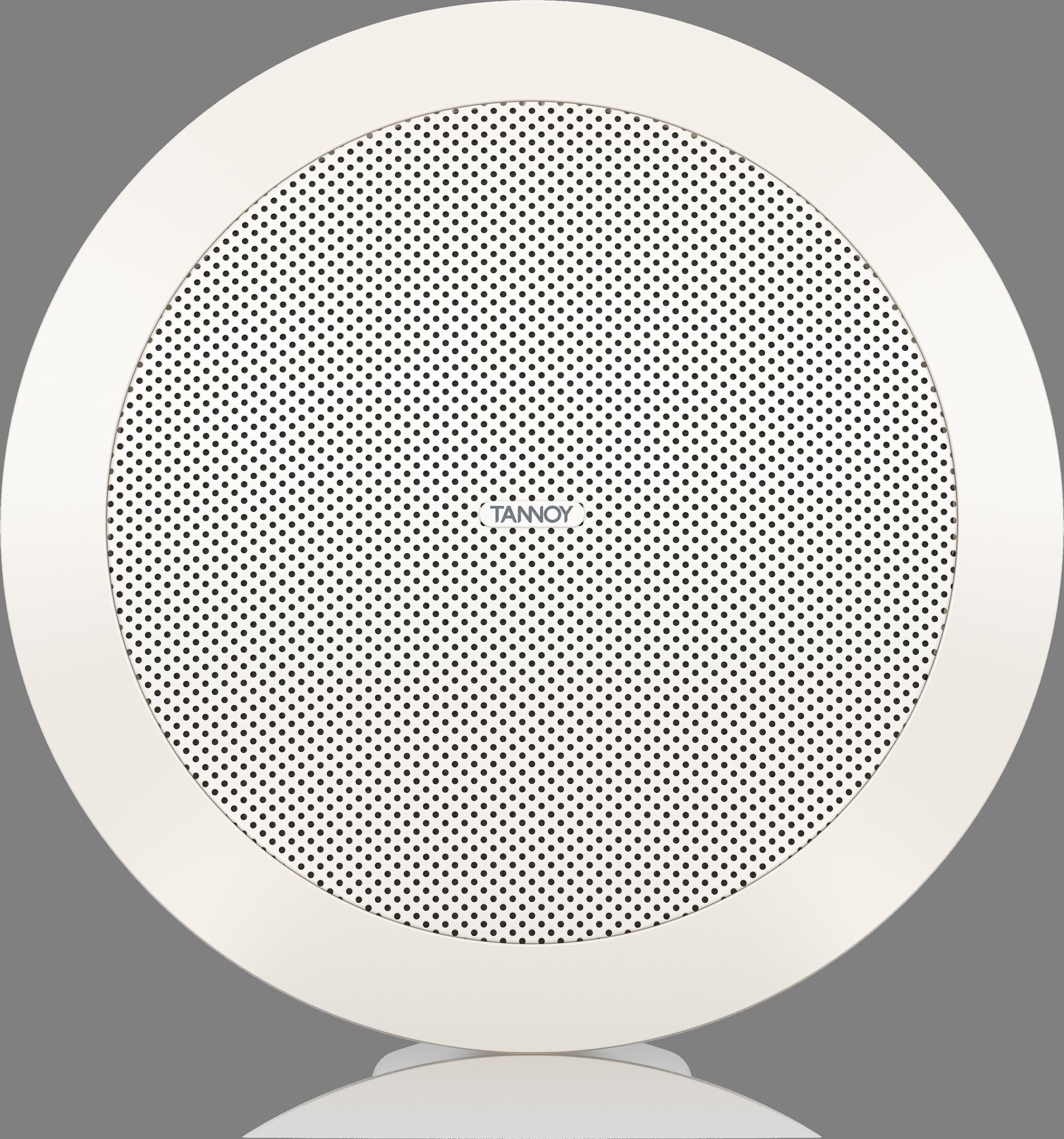 Tannoy  CVS 301 - Install Speaker