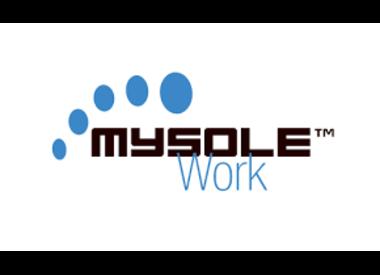 MySole Work