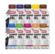 Hammer Nutrition Hammer Gel Pakket