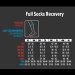 Compressport Compressport | Recovery Socks  | Black