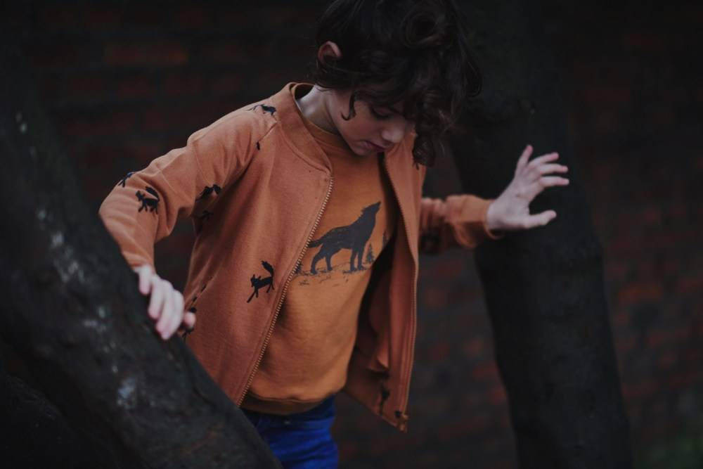 bomber jacket PACO - wandering wolf