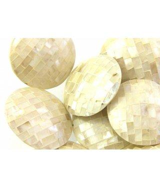 Round Shell Disc - Ivory White