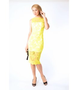 ALEX PERRY Alex Perry Sleeveless Lace Dress