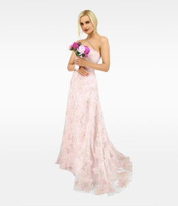 LANA CAPRINA Strapless Princess Dress In Rose