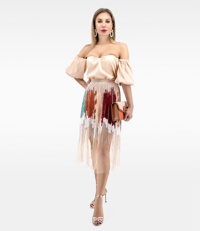 ELISABETTA FRANCHI Embroidered tulle skirt