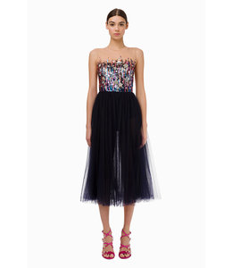 ELISABETTA FRANCHI %Dress With Embroideries