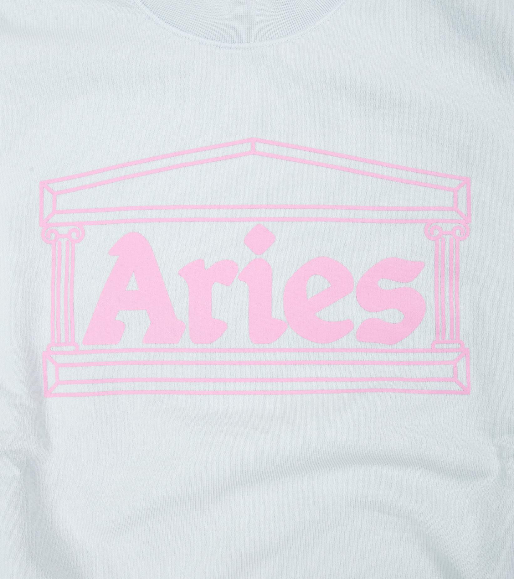 "Column Sweatshirt ""Pale Blue/Pink""-3"