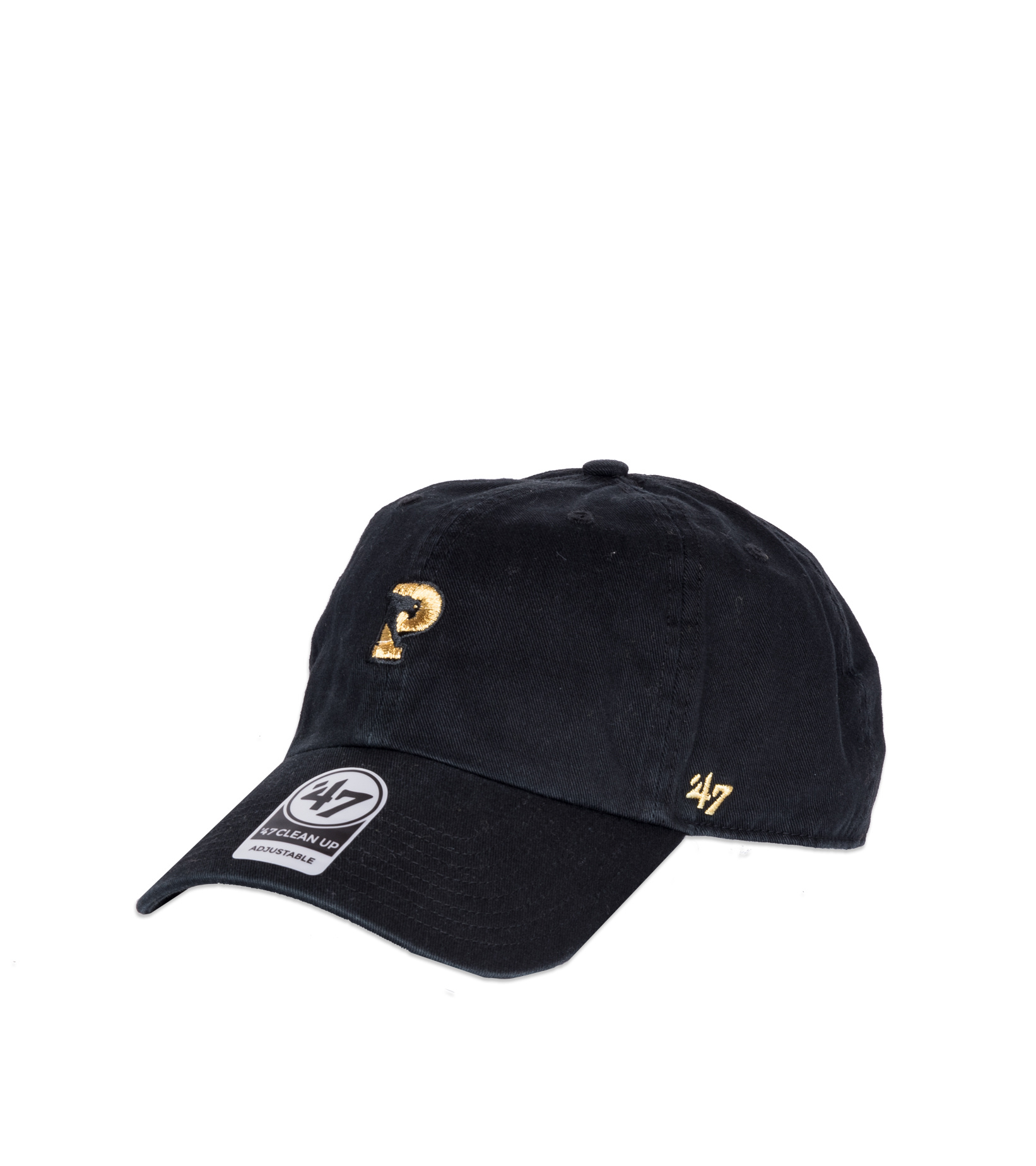 "Logo Dadcap ""Panthers""-1"