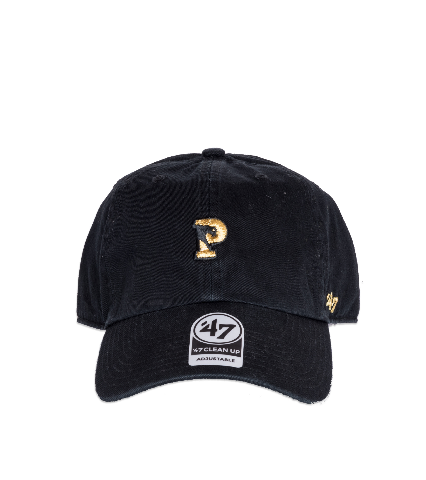 "Logo Dadcap ""Panthers""-3"