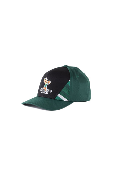 "Milwaukee Bucks DNA 110 Snapback ""Green"""