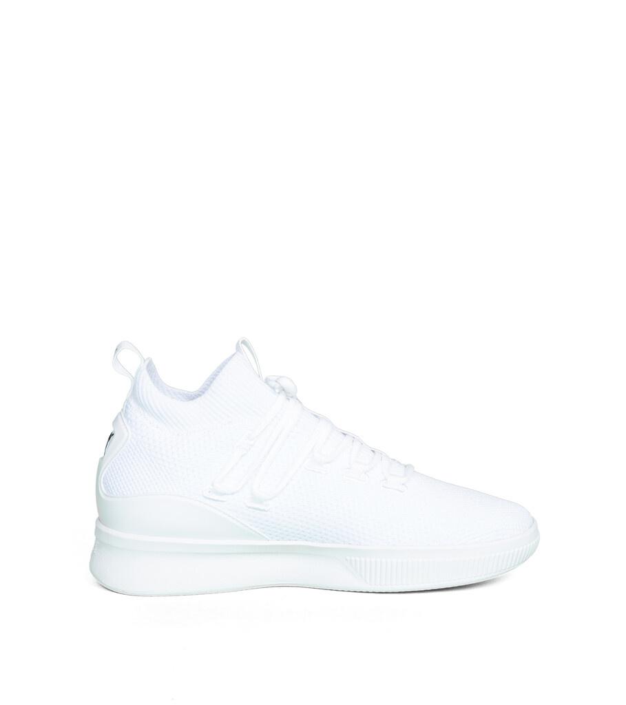 "Clyde Court GW ""White""-5"